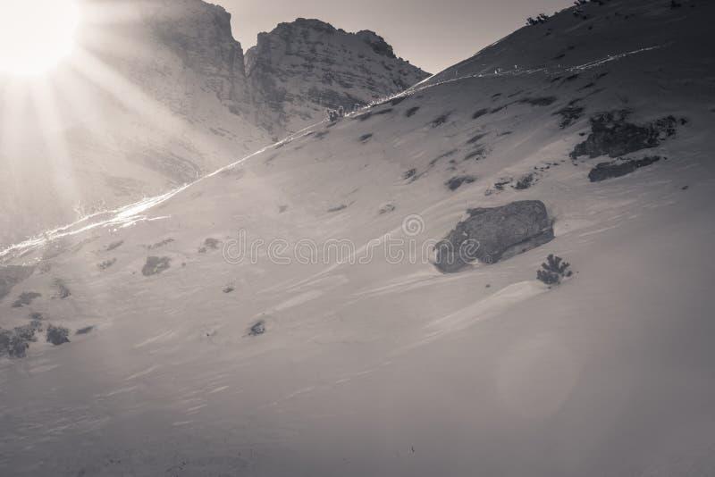 美好的直接阳光下跌在积雪覆盖的山滑雪的倾斜的在白云岩的,意大利 库存照片