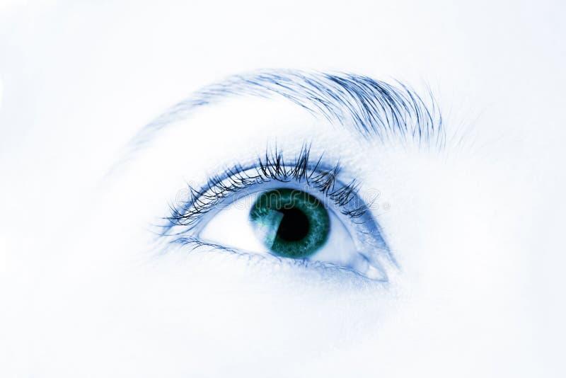 美好的眼睛人宏指令 图库摄影