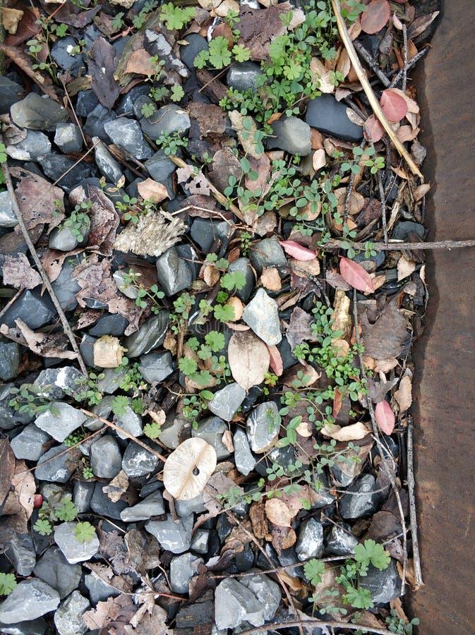美好的石渣背景冬日 免版税图库摄影