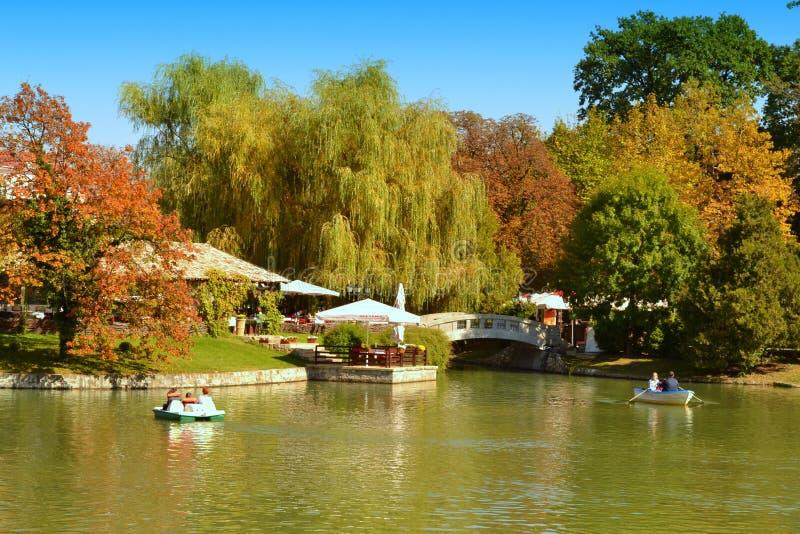 美好的秋天公园自然 免版税库存图片