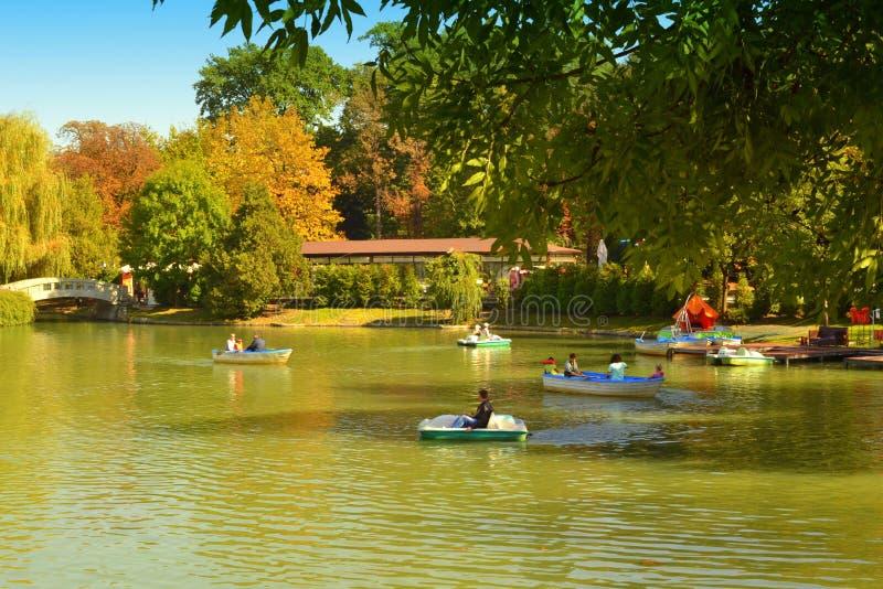 美好的秋天公园自然 库存照片
