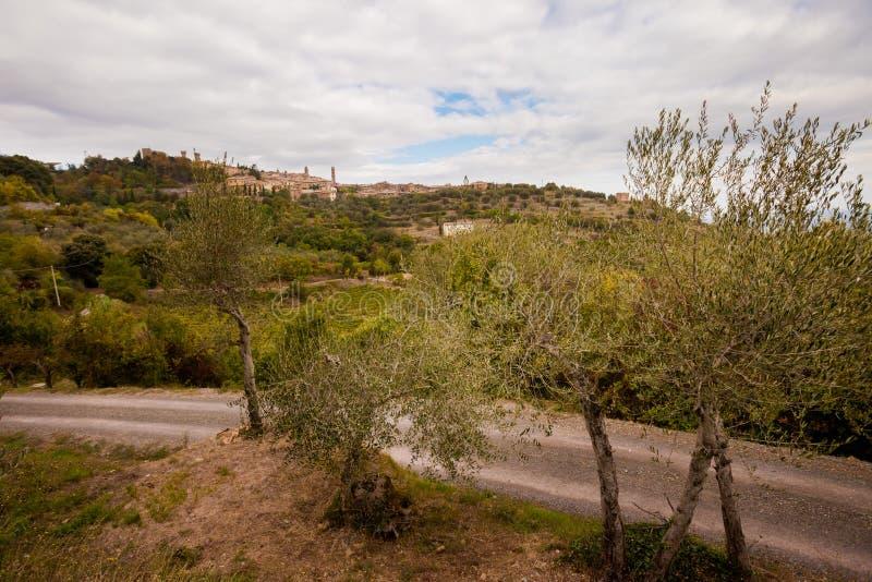 美好的秋天托斯卡纳葡萄园视图 免版税库存照片
