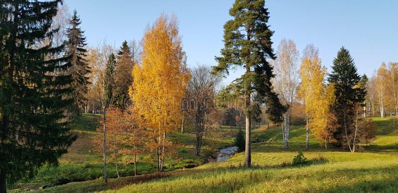 美好的秋天老公园 库存图片