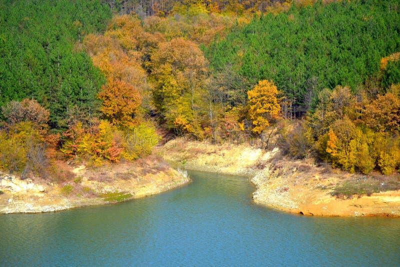 美好的秋天色的湖边森林 免版税库存照片