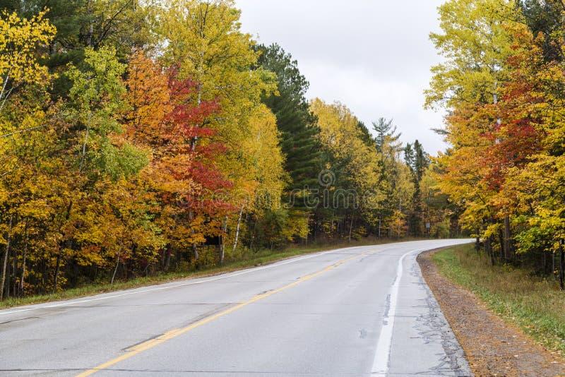 美好的秋天颜色在密执安 免版税图库摄影