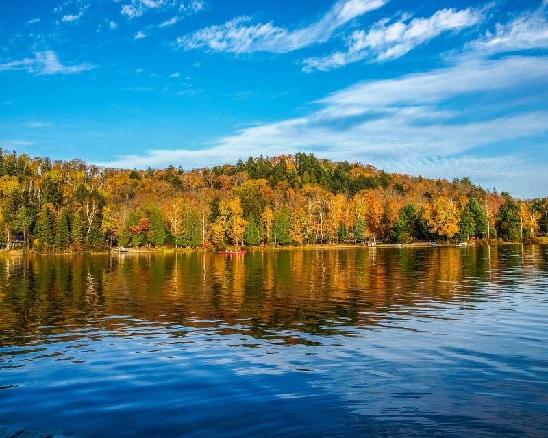 美好的秋天颜色在阿尔冈金省立公园,安大略,加拿大 免版税库存图片