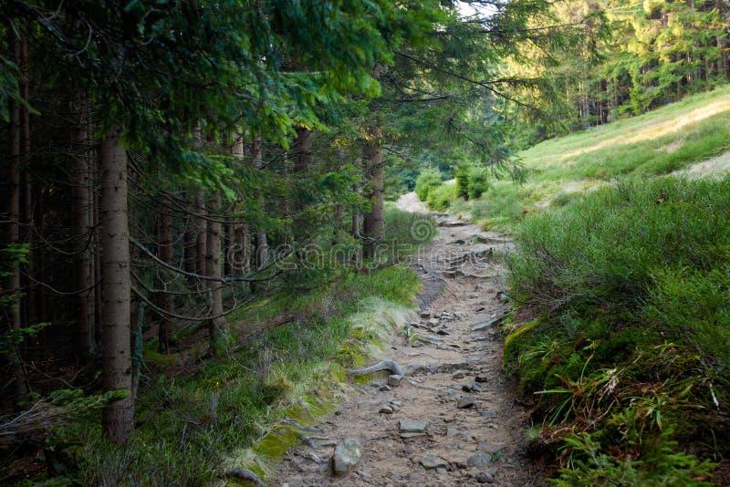 美好的秋天Beskidy山风景 免版税库存图片