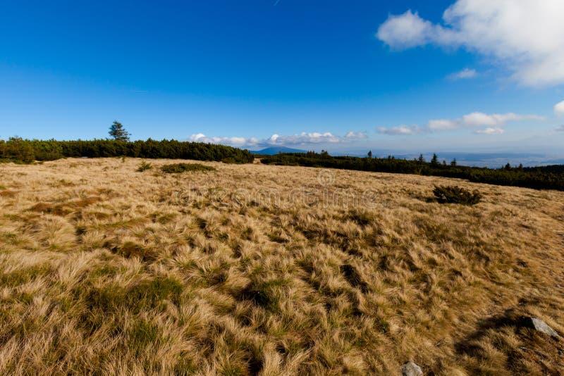 美好的秋天Beskidy山风景 免版税图库摄影