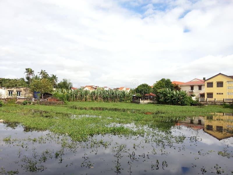 美好的自然视图在越南 库存图片