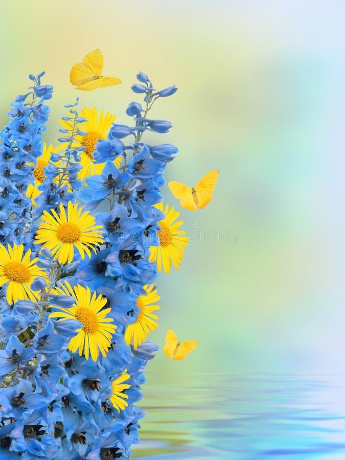 美好的花卉边界,花设计 库存照片