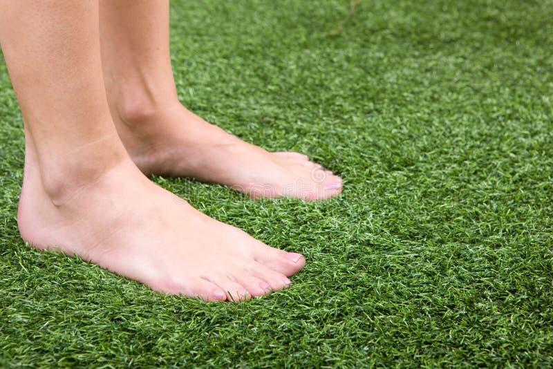 美好的英尺亭亭玉立女性的草绿色 图库摄影