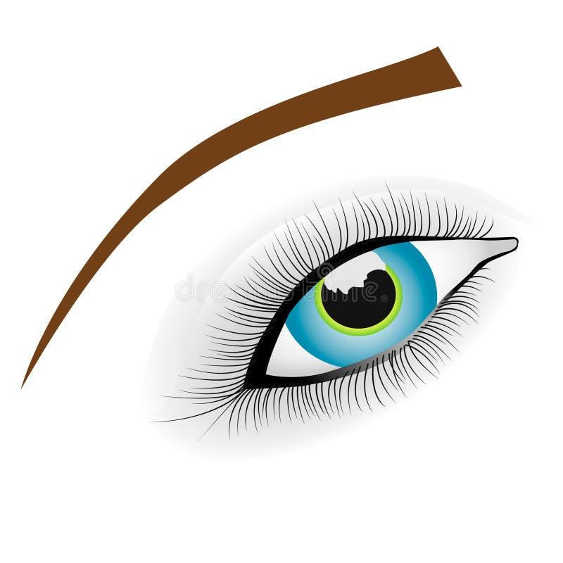 美好的蓝眼睛女性宏观射击 向量例证
