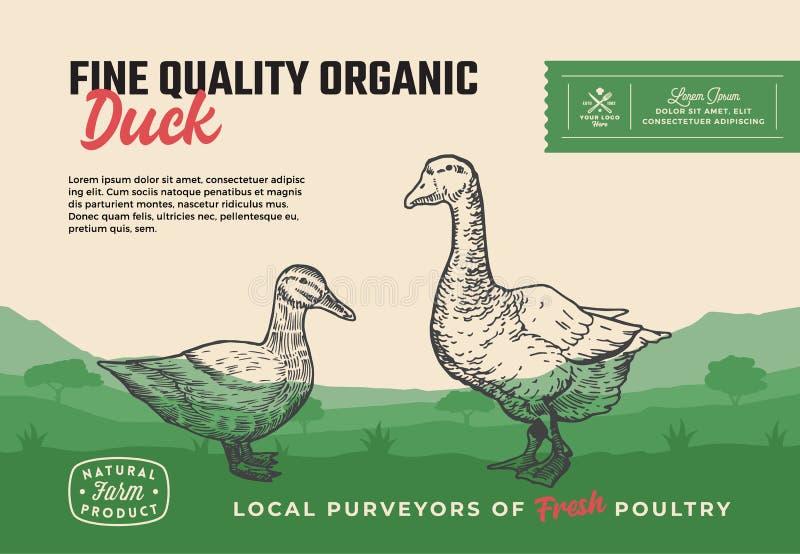 美好的质量有机禽畜 抽象传染媒介肉成套设计或标签 现代印刷术和手拉的鸭子与 皇族释放例证