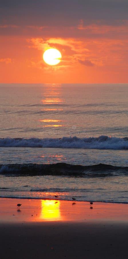 美好的超出岸日出 免版税库存照片