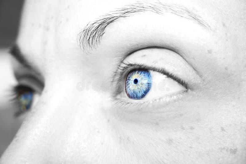 美好的通透的看起来蓝色妇女` s眼睛 库存图片