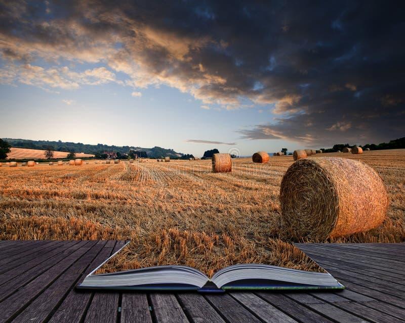 美好的金黄小时干草捆日落风景概念性书 免版税库存图片