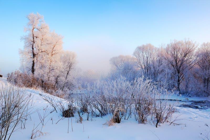美好的霜风景日出 免版税库存照片