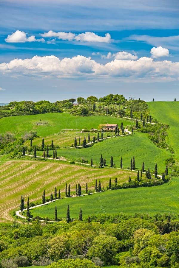 美好的风景在有弯曲的路的托斯卡纳 免版税库存图片
