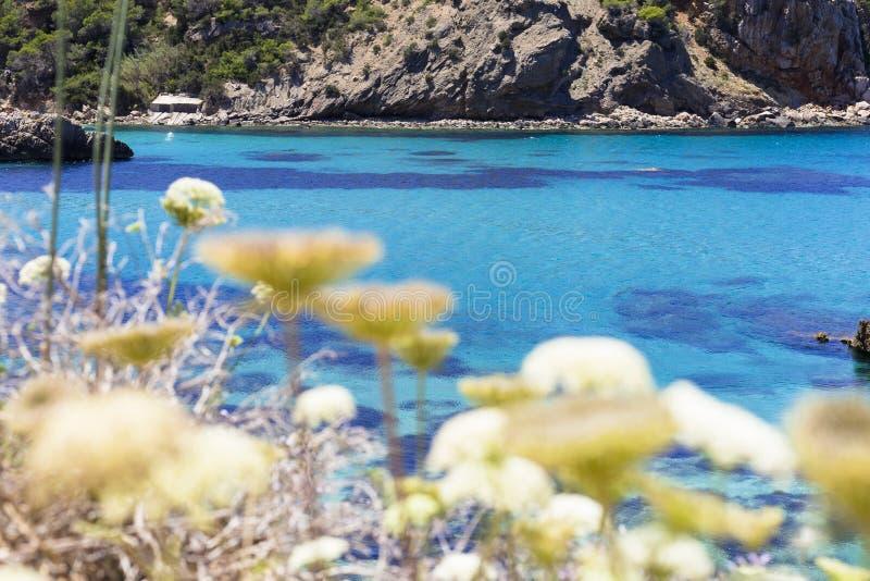 美好的风景在蓝色海洋伊维萨岛在一好日子 夏天和假日概念 免版税图库摄影