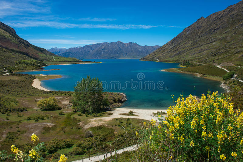 美好的风景新西兰。 免版税库存图片