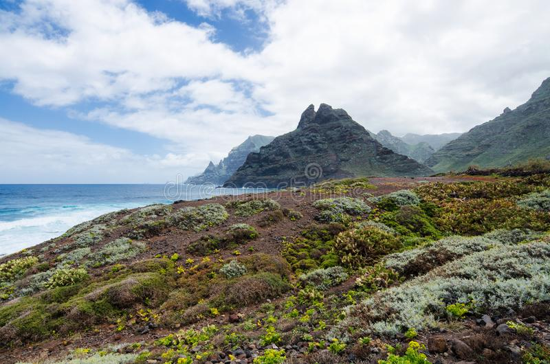 美好的风景有在大西洋的看法,蓬塔del Fronton山在Anaga农村公园在特内里费岛,加那利群岛 免版税库存照片