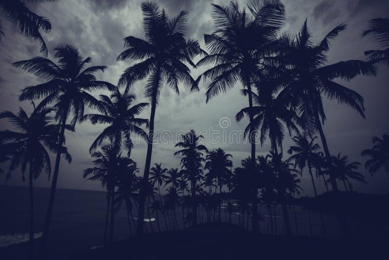 美好的风景热带海滩 免版税图库摄影