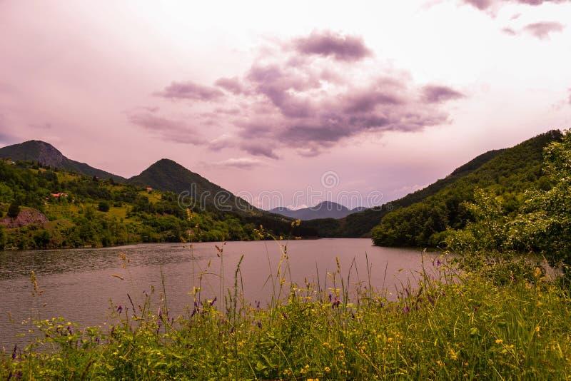 美好的风景 花、绿草、美丽的湖、小山和山看法  一种美好的颜色在背景中 库存图片