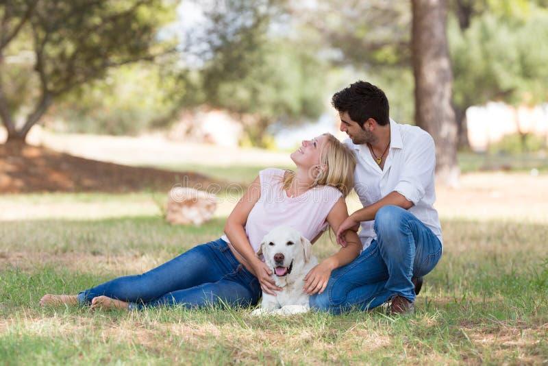 美好的年轻加上在自然的老资深拉布拉多狗 免版税库存照片