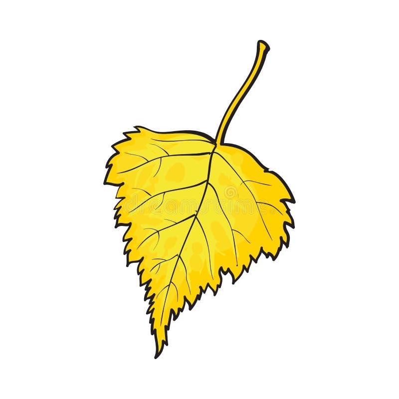 美好的黄色在白色背景上色了秋天桦树事假被隔绝 向量例证