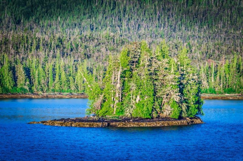 美好的ketchikan阿拉斯加山脉风景 免版税图库摄影