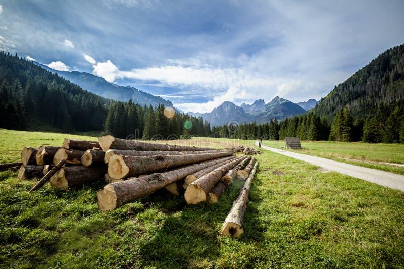 美好的Tatry山风景 库存照片