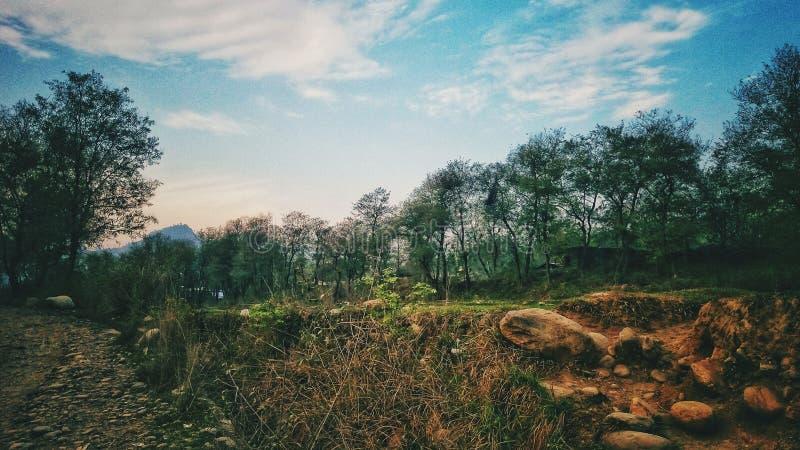 美妙的地平线在Suklagandaki尼泊尔 免版税库存照片