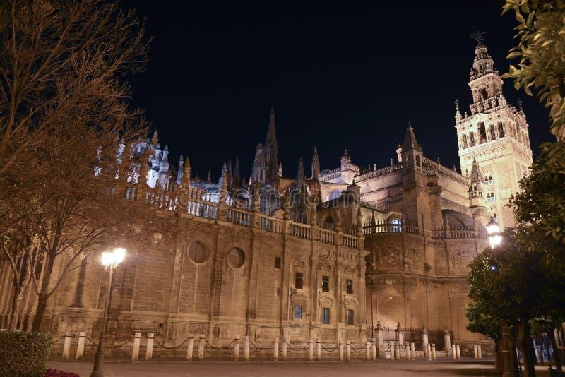 美妙的夜在哥特式大教堂前面的塞维利亚 库存照片