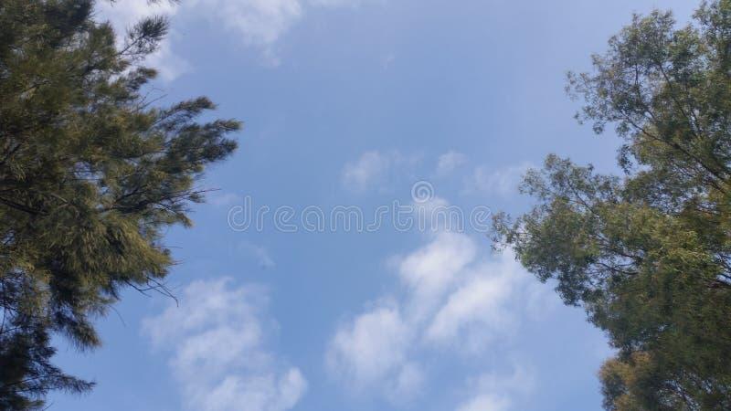美妙的天空 库存照片