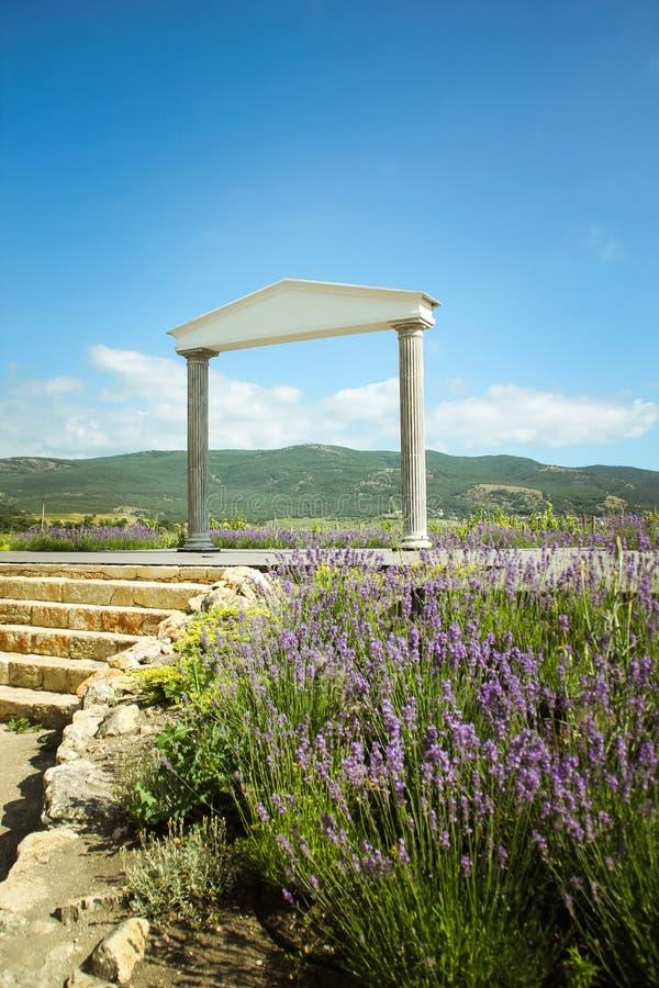 美妙的希腊曲拱 克里米亚和开花的淡紫色葡萄园和山的令人惊讶的看法  美好的风景  免版税库存图片