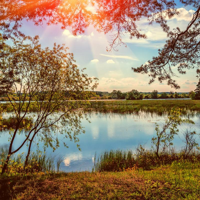 草和河的晚上晴朗的风景 庄严秋天风景 库存图片 - 图片 包括有 平安