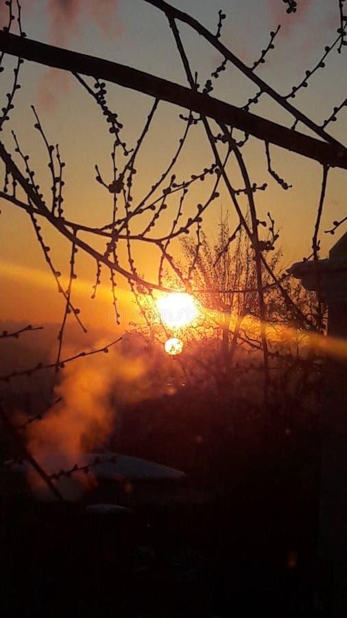 美妙的日落 库存照片