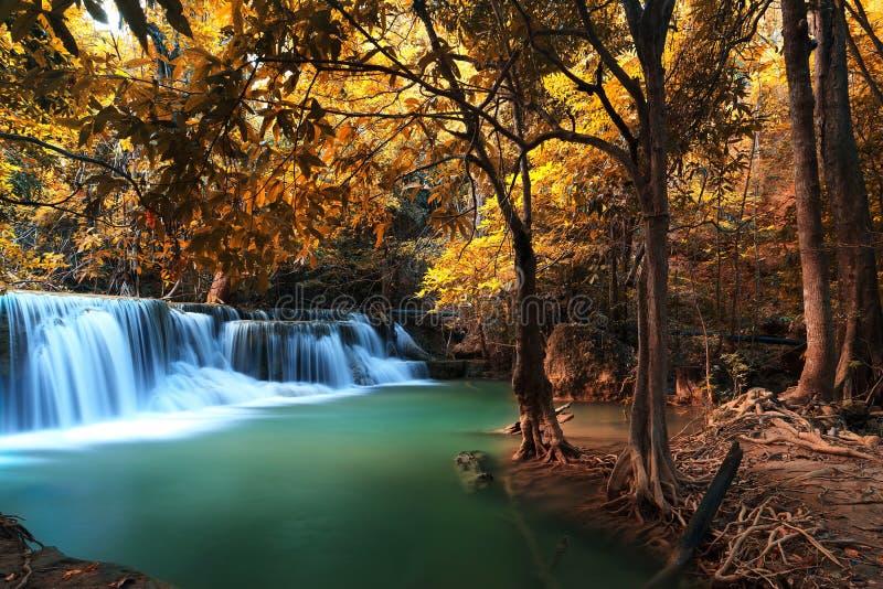 秋天深森林瀑布在Kanchanaburi 库存照片