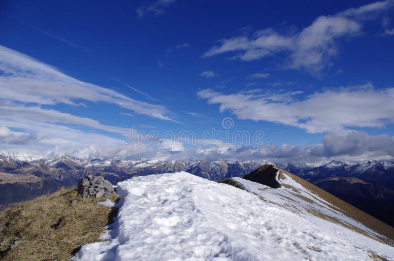 美妙的阿尔卑斯 免版税库存照片