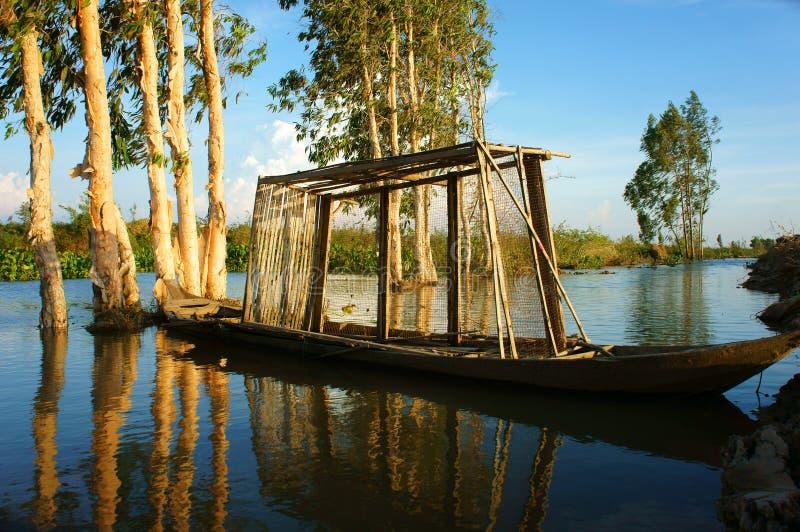 美妙的风景,越南乡下,湄公河三角洲 免版税库存图片