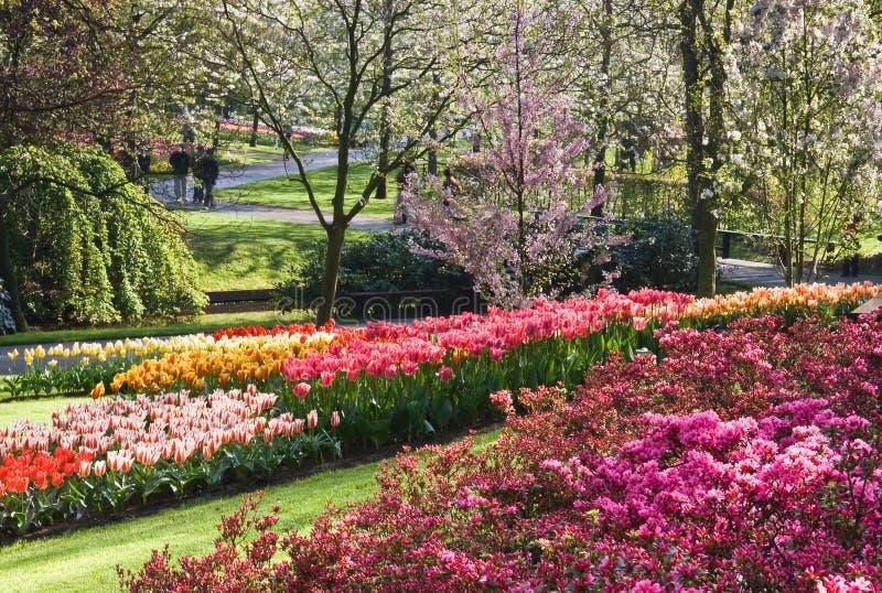 美妙4月开花的庭院的春天 库存照片