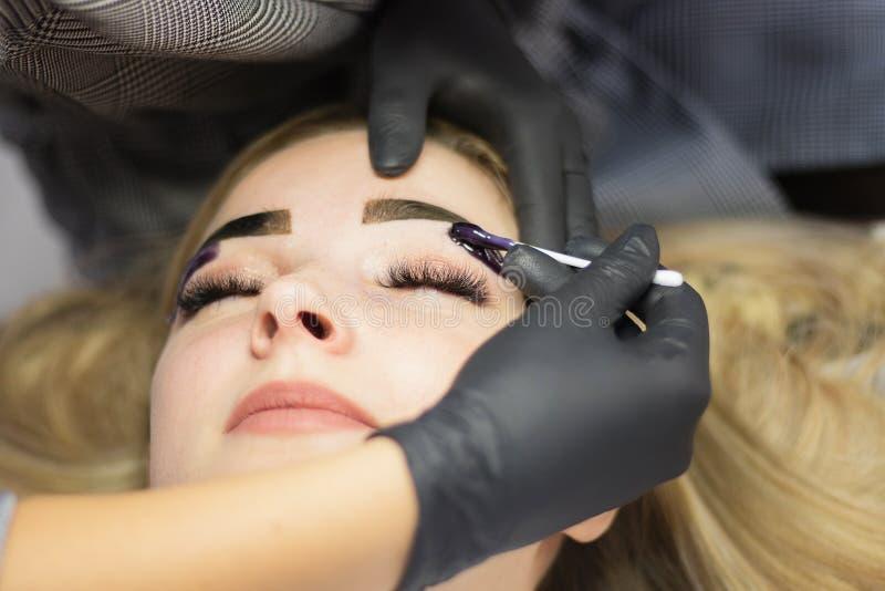 美容师在发廊执行在一个美好的模型的眼眉更正 女孩是白肤金发的 r 无刺指甲花洗染 库存照片