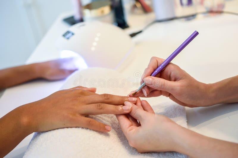 美容师特写镜头与刷子的绘的妇女` s钉子 免版税库存图片