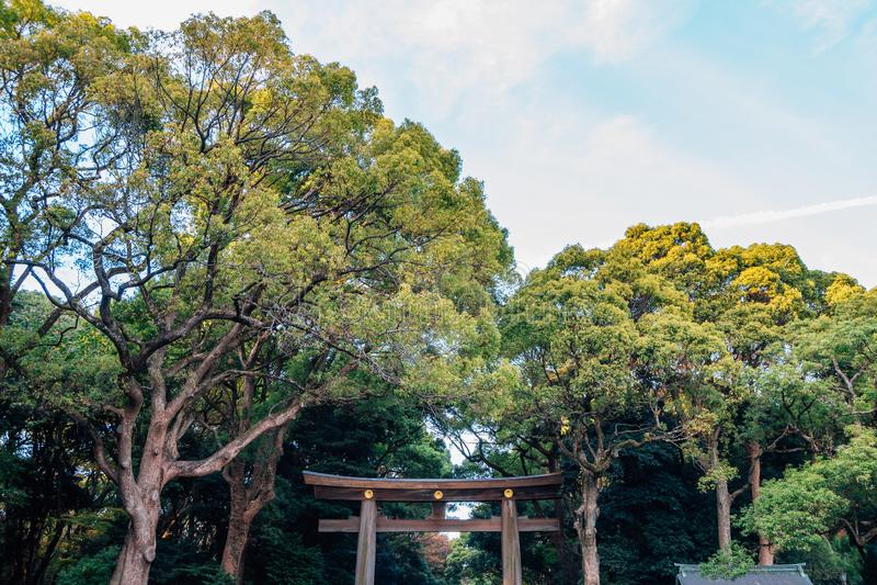 美济礁神功皇后寺庙鸟居门在东京,日本 库存照片