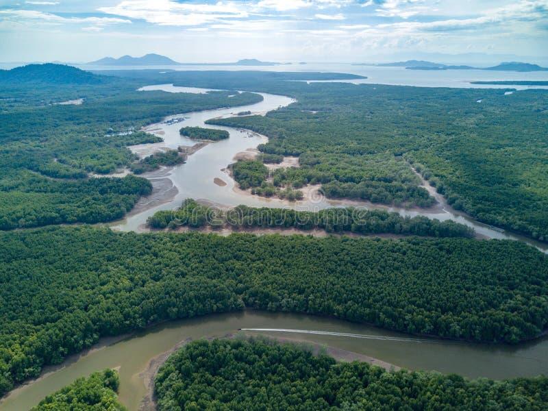 美洲红树树森林和河鸟瞰图Ranong的, Thailan 图库摄影