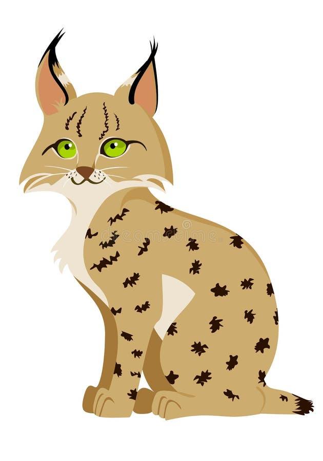 美洲野猫 库存例证