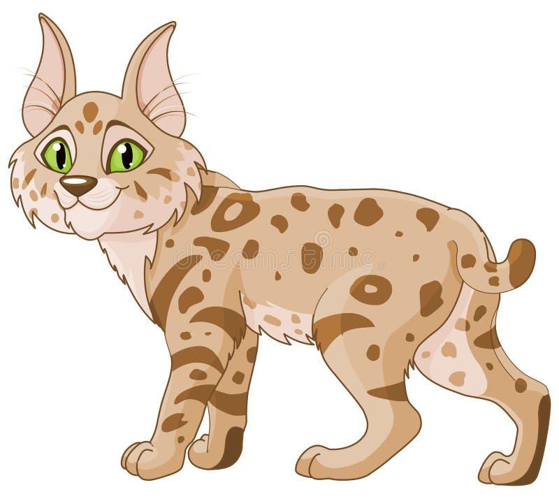 美洲野猫 皇族释放例证