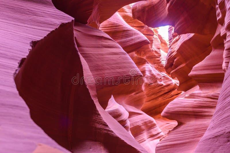 羚羊峡谷-位于那瓦伙族人土地在页附近,亚利桑那,美国-在槽孔峡谷的美好的色的岩层在美国人 免版税库存照片