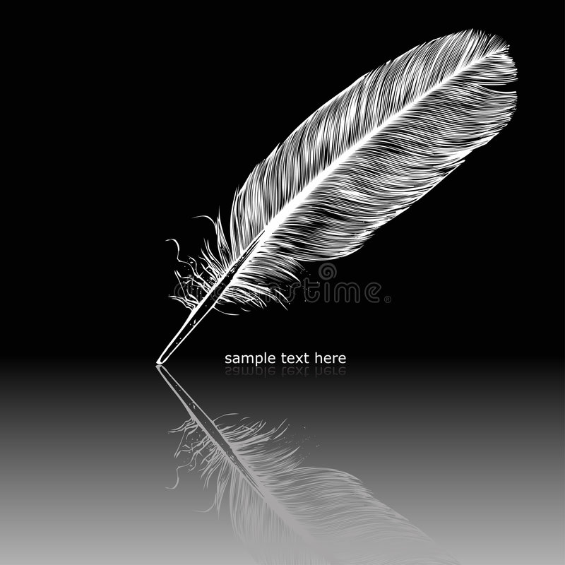羽毛反射的白色 皇族释放例证