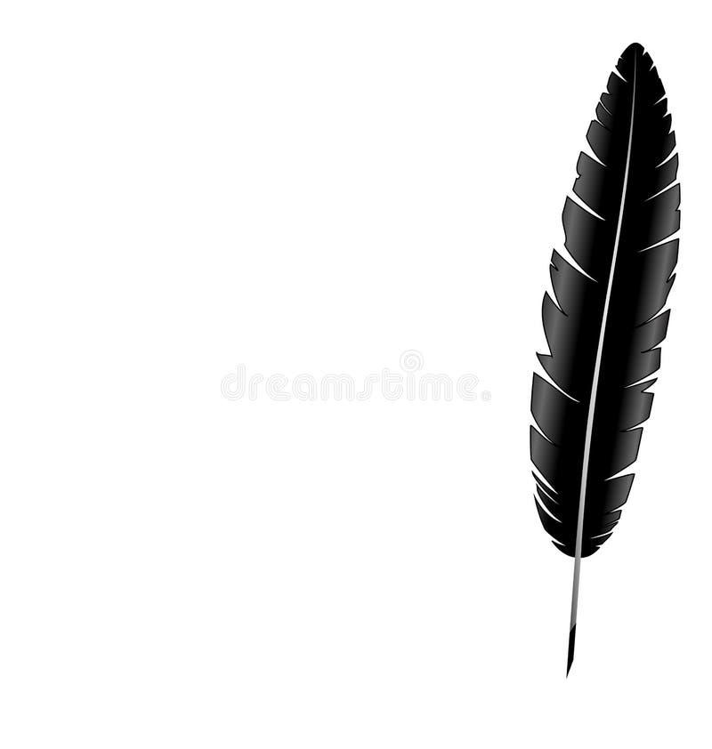 羽毛查出的白色 向量例证